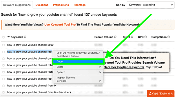 Grab the first keyword related to your keyword from KeywordTool.io and paste it into Youtube search bar.