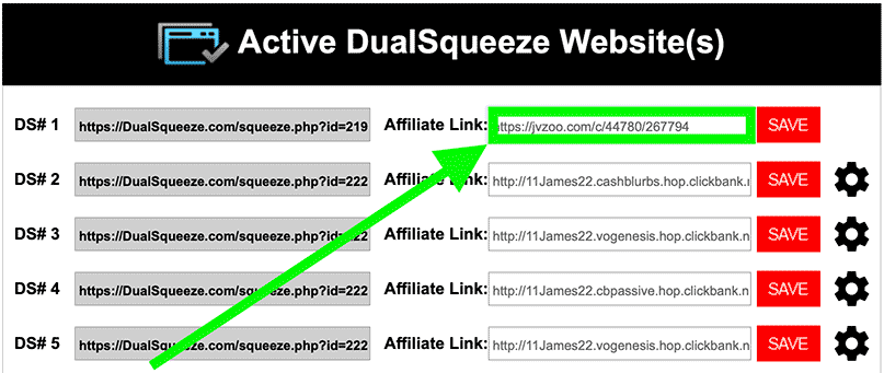Paste your affiliate link into Dual Squeeze Member's area